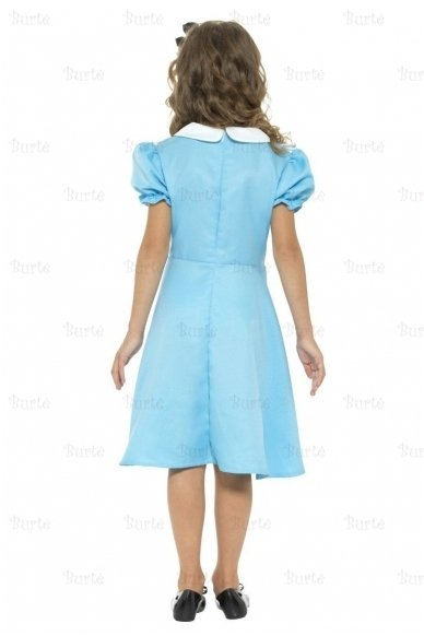 Alice costume 3