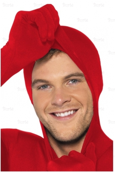 Antros odos raudonas kostiumas 2