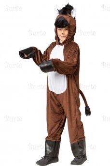 Arklio kostiumas
