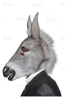 Asilo kaukė