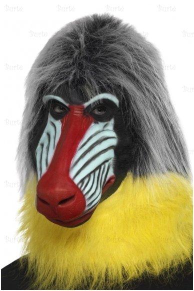 Babūno kaukė