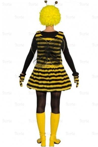 Bitės kostiumas 3