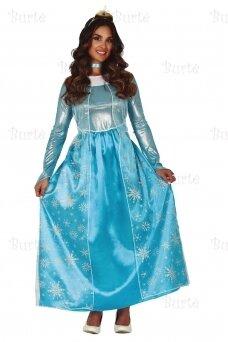 Frost princess costume