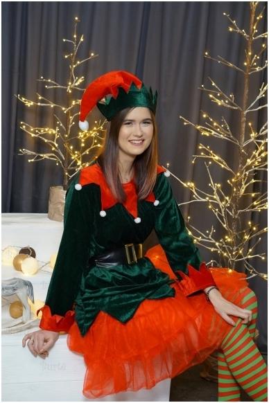 Elfo kostiumas 3