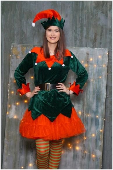 Elfo kostiumas
