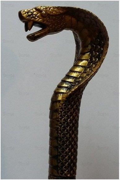 Faraono lazda 2