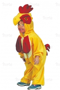 Little rooster costume