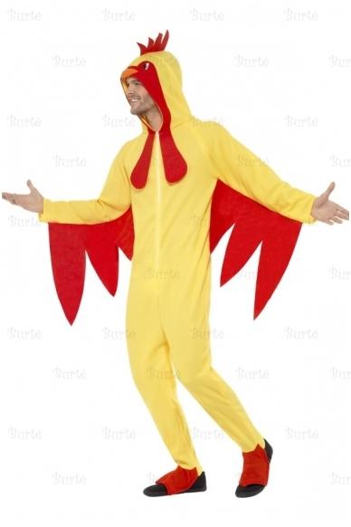 Gaidžio kostiumas 2