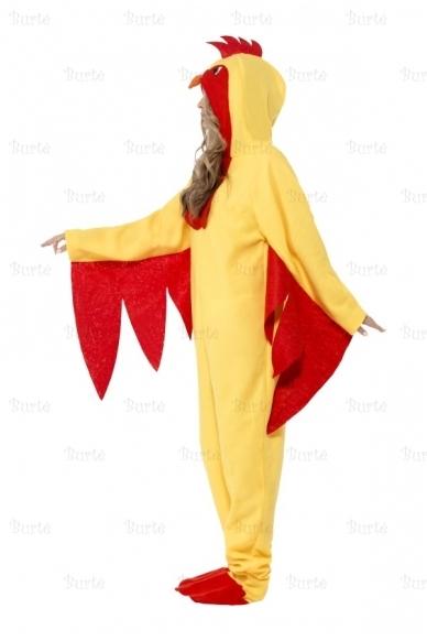 Gaidžio kostiumas 5