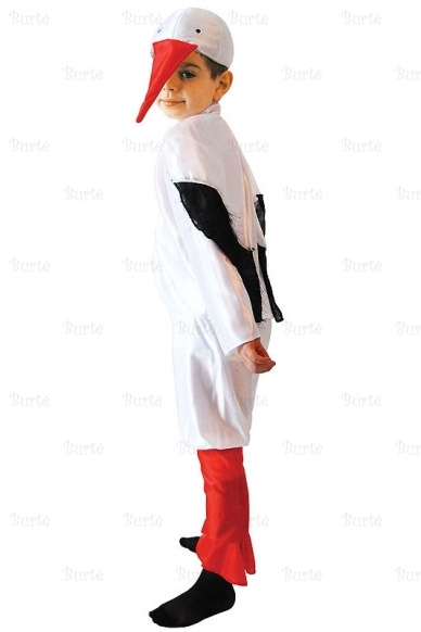 Gandro kostiumas 3