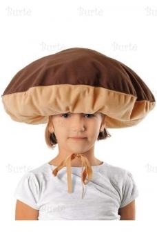 Шляпа гриб Боровик
