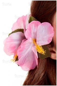 Гавайский цветок