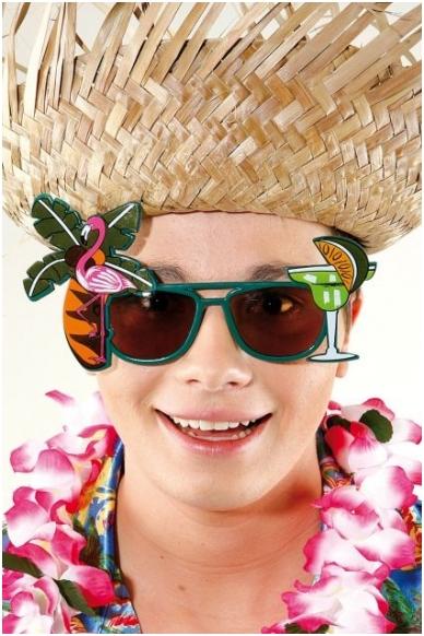 Havajietiški akiniai 2
