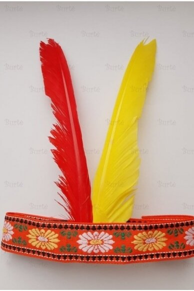 Indėno plunksnos 2