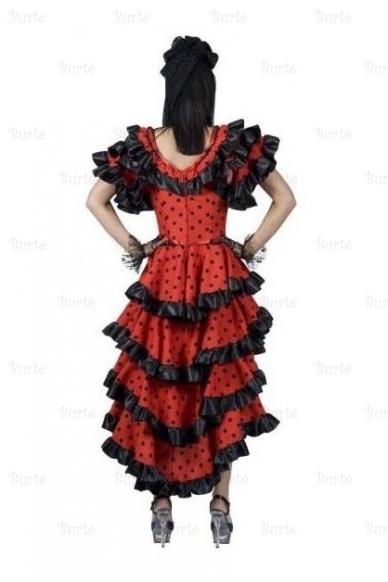 Spanish lady costume 2
