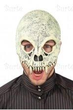 Kaukolės kaukė