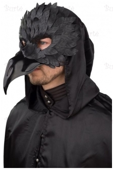 Men's mask raven