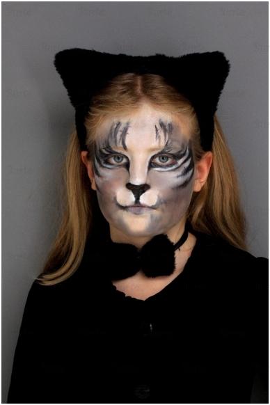 Katės rinkinys 2
