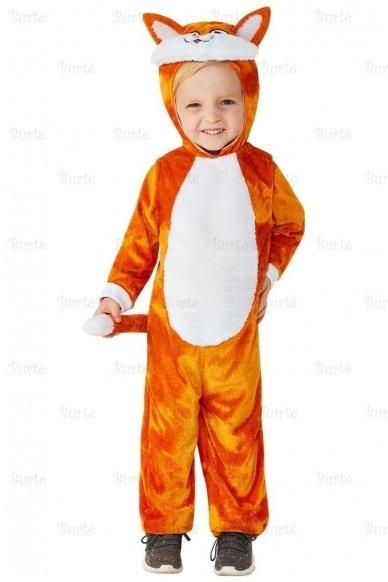 Katino kostiumas 2