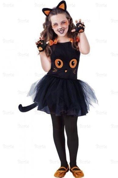 Katytės kostiumas