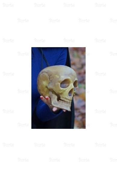 Kaukolė 3