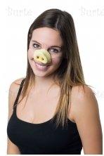 Kiaulės nosis