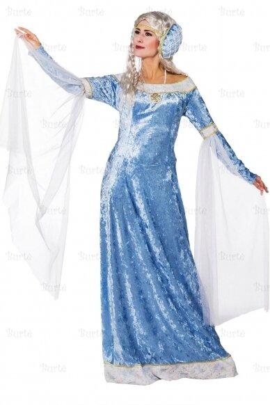 Ledo karalienės kostiumas