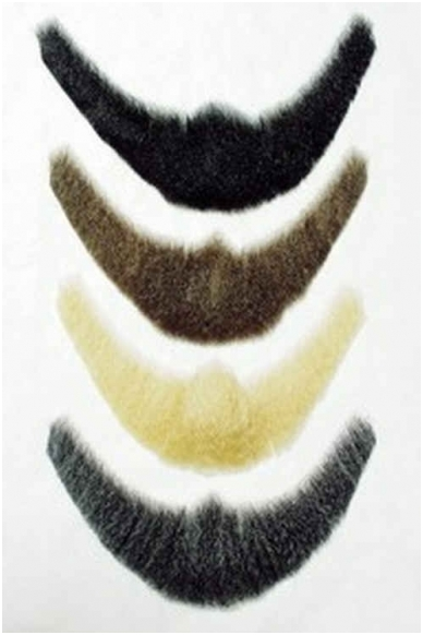 Linkolno barzda 3