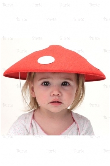 Musmirės skrybėlė 2