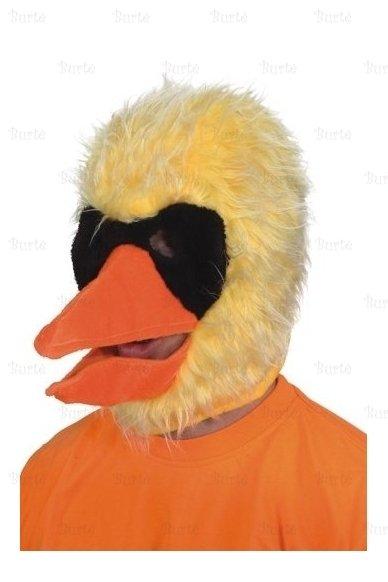 Paukščio kepurė - kaukė