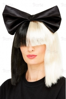 Two Tone Popstar Wig