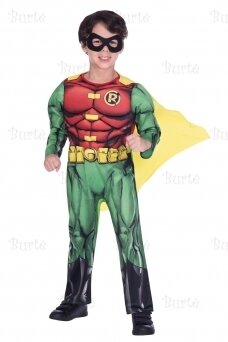 Child Costume Robin