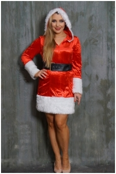 Miss Christmas costume