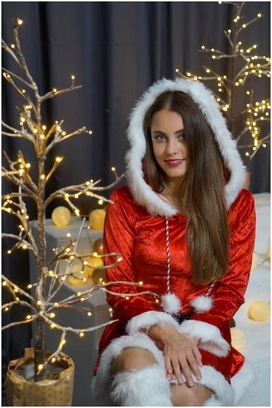 Ladies Costume Sassy Santa 2