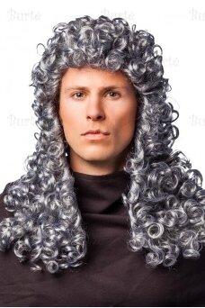 Teisėjo perukas