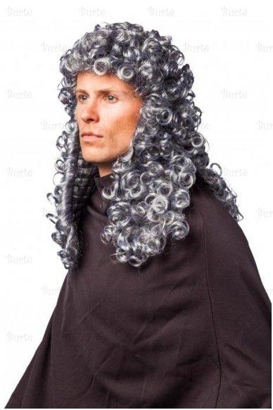 Teisėjo perukas 2
