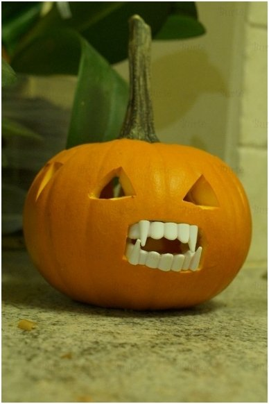 Vampyro dantys, balti 2