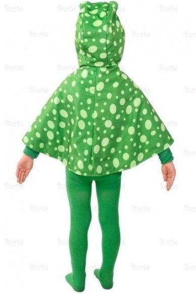 Varlės kostiumas 2