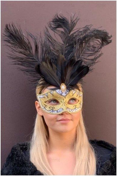 Venecijos kaukė su plunksnomis
