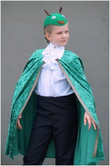 Žalia skraistė vaikams 4