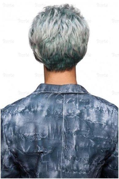 Žilų plaukų perukas 3